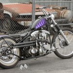 Purple Shovelhead